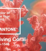 rsz_pantone-color-of-the-year-2019-living-coral-banner-mobile
